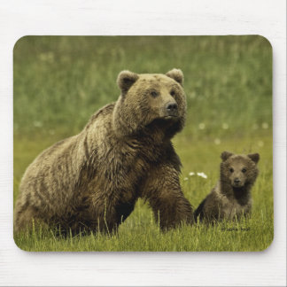 Mama grizzly and cub mouse pad