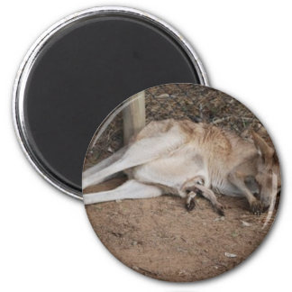 Mama Kangaroo with Joey in Pouch 6 Cm Round Magnet