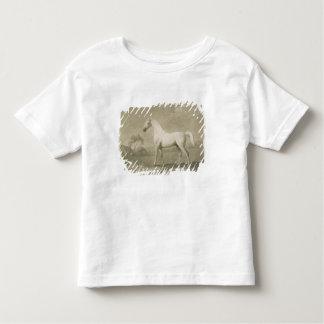 Mambrino, after George Stubbs, 1788 (mezzotint) Toddler T-Shirt