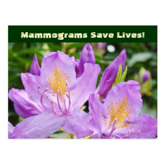 Mammograms Save Lives postcards Flowers