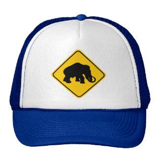 Mammoth Crossing Cap