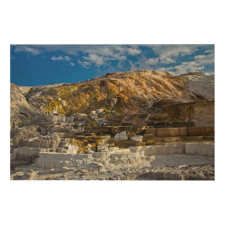 Mammoth Hot Spring Wood Print