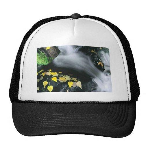 Mammoth Mountain Falls Hat