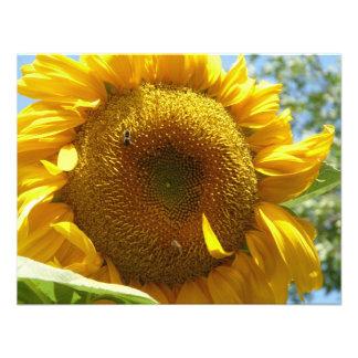 mammoth sunflower custom invitation