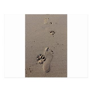 Man and dog footprints best friends postcard
