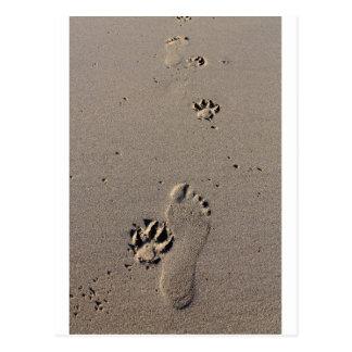 Man and dog footprints best friends postcards