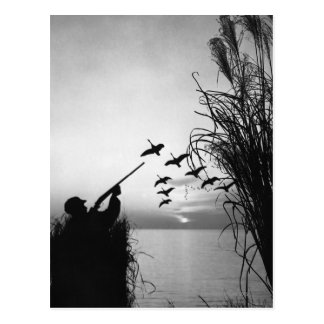Man Duck Hunting Post Card