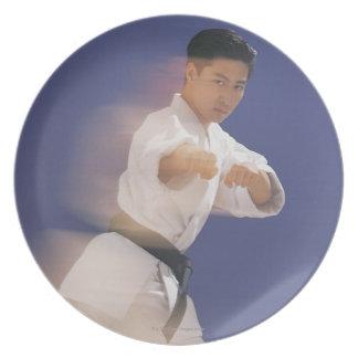 Man in karate stance plates