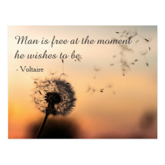 Man is Free Voltaire Quote Postcard