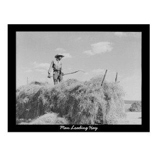 Man Loading Hay Postcard