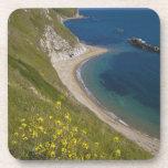 Man o War Bay, Jurassic Coast, Lulworth, Dorset, Drink Coaster