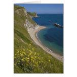 Man o War Bay, Jurassic Coast, Lulworth, Dorset, Greeting Card