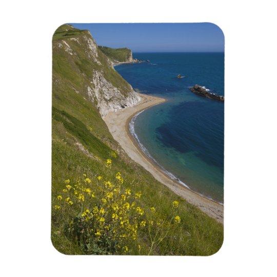 Man o War Bay, Jurassic Coast, Lulworth, Dorset, Rectangular Photo Magnet
