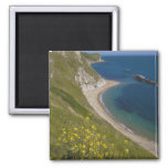 Man o War Bay, Jurassic Coast, Lulworth, Dorset, Square Magnet