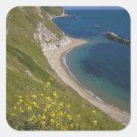 Man o War Bay, Jurassic Coast, Lulworth, Dorset, Square Sticker