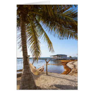 Man Relaxing In A Hammock Under Palm Tree, Belize Greeting Card