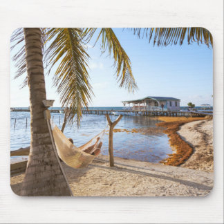 Man Relaxing In A Hammock Under Palm Tree, Belize Mouse Mat