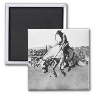 Man riding bucking horse in rodeo magnet