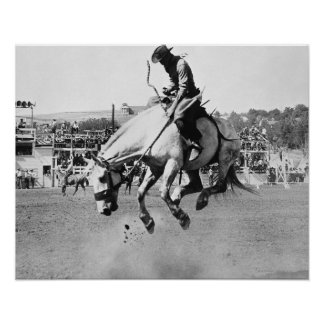 Man riding bucking horse in rodeo poster