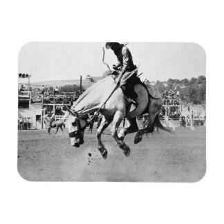 Man riding bucking horse in rodeo vinyl magnets