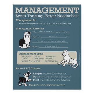 Management Poster