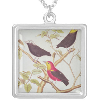 Manakins Silver Plated Necklace