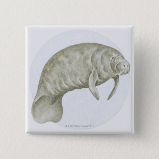 Manatee 15 Cm Square Badge