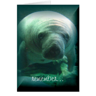 Manatee Birthday Wishes - Happy Birthday Card
