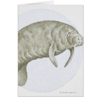 Manatee Card