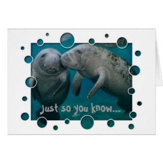 Manatee Love Valentine s Day Greeting Cards