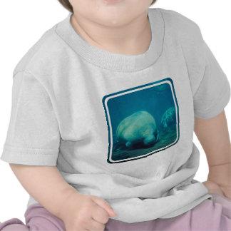 Manatee Photo Baby T-Shirt