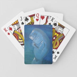 manatee playing cards