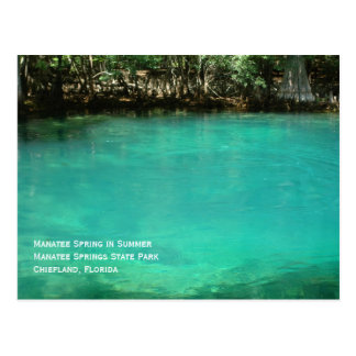 Manatee Springs Postcard