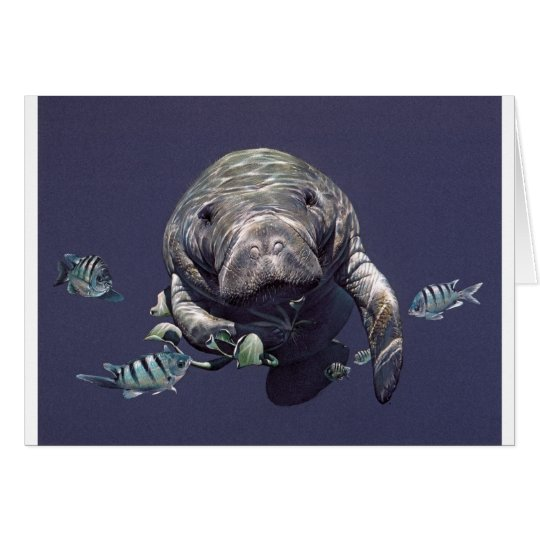 Manatee Underwater World Card