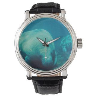 Manatee Wrist Watches