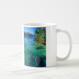 Manatees Basic White Mug