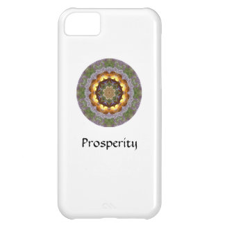 Mandala iPhone Case iPhone 5C Case