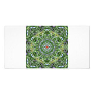 Mandala July 16 Picture Card