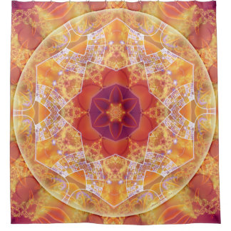 Mandalas for Times of Transition 10 Shower Curtain