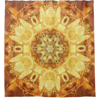 Mandalas from the Heart of Change 3 Shower Curtain
