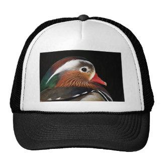 Mandarin Duck Hats