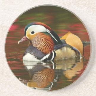 Mandarin duck coaster