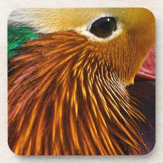Mandarin Duck Coaster set of 6