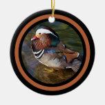 Mandarin Duck - Rusty Round