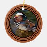 Mandarin Duck - Rusty Round 3