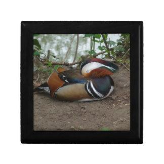 Mandarin Duck Small Square Gift Box
