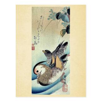 Mandarin ducks by Ando, Hiroshige Ukiyoe Postcard