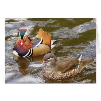 Mandarin Ducks Card