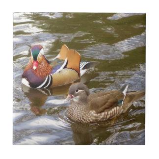 Mandarin Ducks Tile