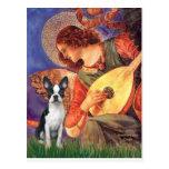 Mandolin Angel - Boston Terrier #1 Postcard